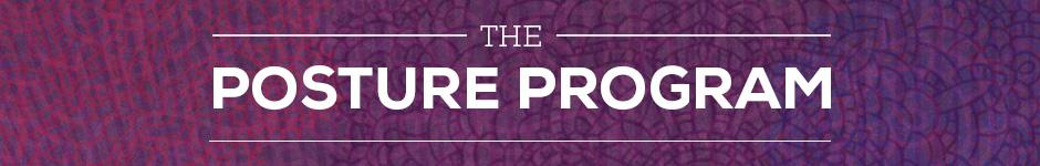The Posture Program